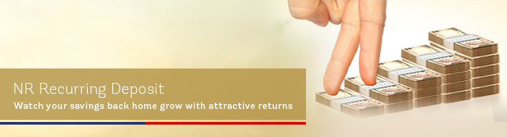 Best investment options for nri 2016